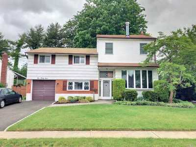 East Meadow Single Family Home For Sale: 239 Clearmeadow Dr