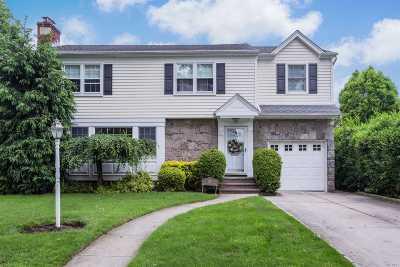 Garden City Single Family Home For Sale: 47 Harvard St