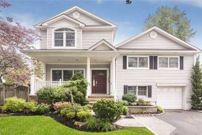 Syosset Single Family Home For Sale: 23 Ava Dr