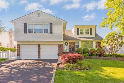 Garden City Single Family Home For Sale: 37 Homestead Ave