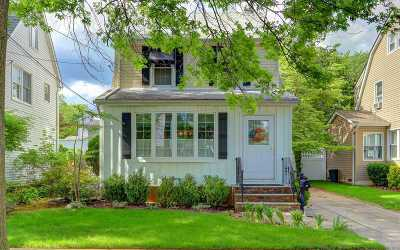 Williston Park Single Family Home For Sale: 95 Yale St
