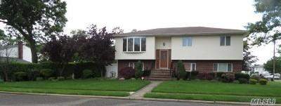 Farmingdale Single Family Home For Sale: 74 Graham St