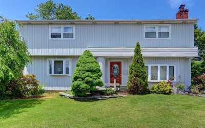 Hicksville Single Family Home For Sale: 100 Princess St.