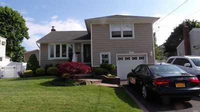 Massapequa Park Single Family Home For Sale: 232 Violet St