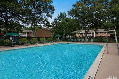 Selden Rental For Rent: 111 College Rd #2D