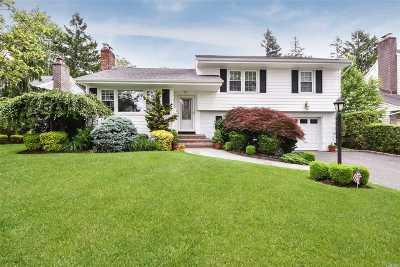 Garden City Single Family Home For Sale: 169 Kildare Rd