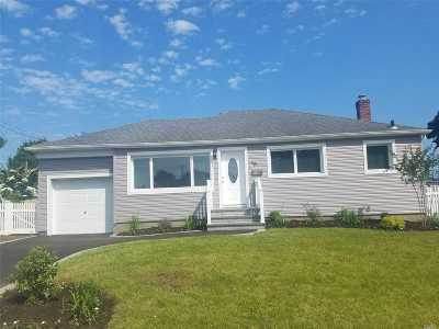 East Meadow Single Family Home For Sale: 44 Rita Dr