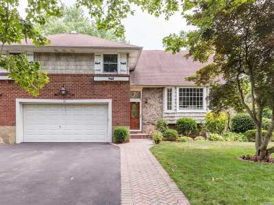 Syosset Single Family Home For Sale: 42 Terrehans Ln