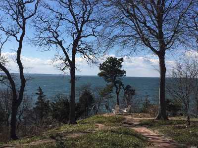 Setauket Residential Lots & Land For Sale: 10 Holly Ln