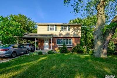 Centereach Single Family Home For Sale: 125 Tree Rd