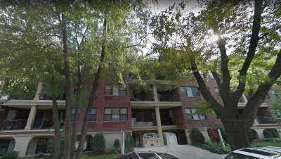 Fresh Meadows Condo/Townhouse For Sale: 71-17 162nd St #1
