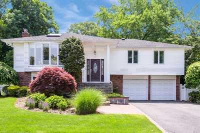 Jericho Single Family Home For Sale: 41 E Fern Dr