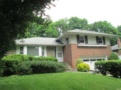 Westbury Single Family Home For Sale: 60 Rose Ave