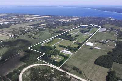 Jamesport Residential Lots & Land For Sale: 1396 Main Rd