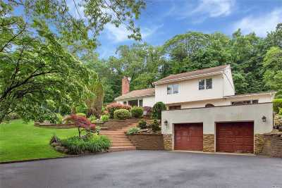Syosset Single Family Home For Sale: 29 Hillside Ln