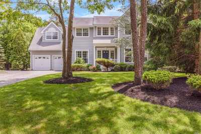 Westhampton Single Family Home For Sale: 18 Hollow Ln