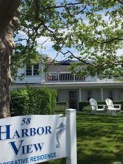 Westhampton Rental For Rent: 58 Library Ave #Pentho