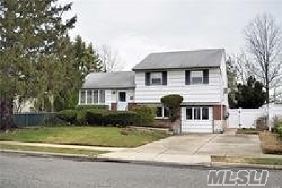 Levittown Single Family Home For Sale: 3198 Jeffries Rd