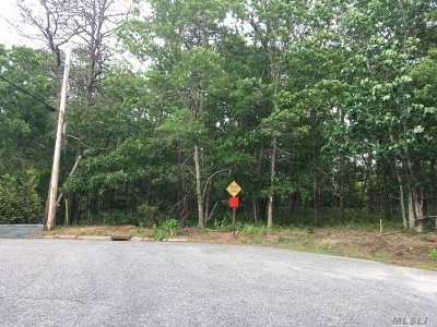 Hampton Bays Residential Lots & Land For Sale: 3 Hubbard Ln