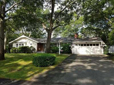Patchogue Single Family Home For Sale: 100 Swan Lake Dr