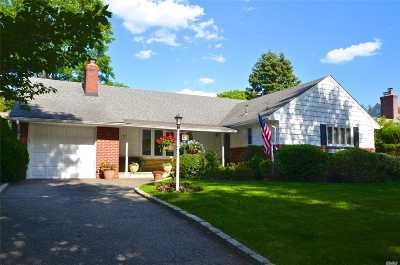 Garden City Single Family Home For Sale: 77 Monroe St