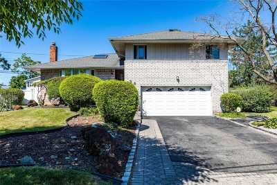 Westbury Single Family Home For Sale: 25 Oakdale Dr
