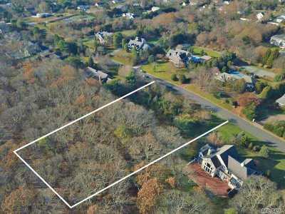 Remsenburg Residential Lots & Land For Sale: 16 Wisteria Dr