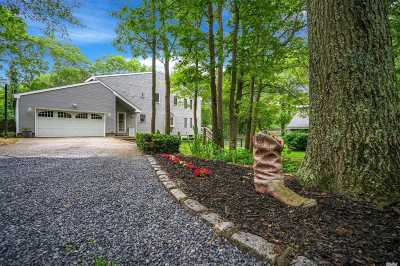 Manorville Single Family Home For Sale: 163 Silas Carter Rd