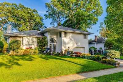 Jericho Single Family Home For Sale: 72 Hedgerow Ln