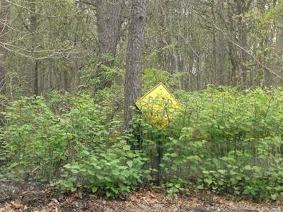 Patchogue Residential Lots & Land For Sale: Lot #2 Mowbray St
