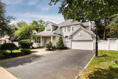 Syosset Single Family Home For Sale: 19 Wendy Rd