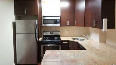 Fresh Meadows Condo/Townhouse For Sale: 71-19 162nd St #4E
