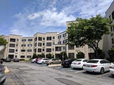 Freeport Condo/Townhouse For Sale: 725 Miller Ave #405