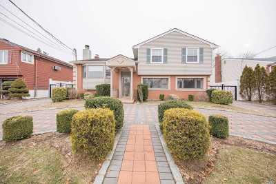 Hicksville Single Family Home For Sale: 50 Dante Ave