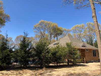 Westhampton Single Family Home For Sale: 47 North Quarter Rd