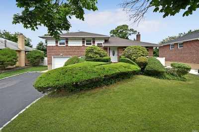 Massapequa Park Single Family Home For Sale: 20 Lourae Dr