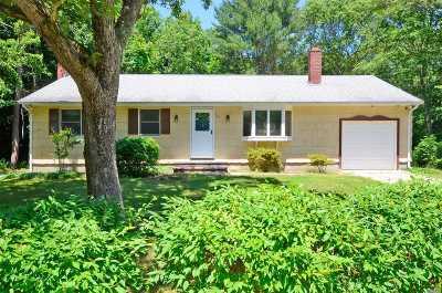 Medford Single Family Home For Sale: 543 Long Island Ave