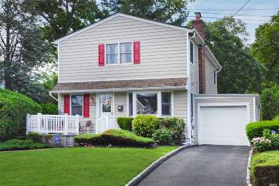 Lynbrook Single Family Home For Sale: 417 Whitehall St