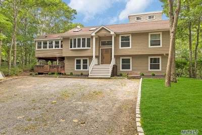 Hampton Bays Single Family Home For Sale: 30 Squires Blvd