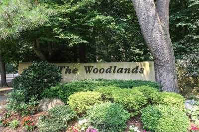 Woodbury Condo/Townhouse For Sale: 115 Woody Ln