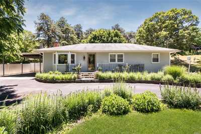 Holtsville Single Family Home For Sale: 310 Long Island Ave