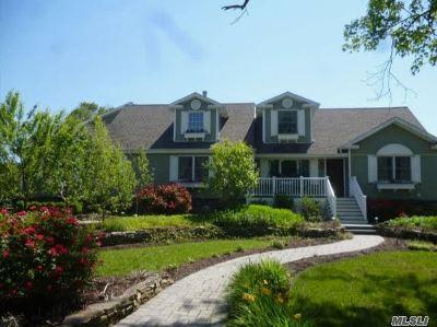 Oakdale Single Family Home For Sale: 167 Bellevue Rd