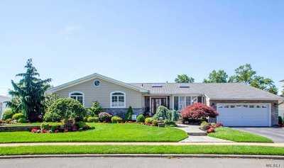 Massapequa Park Single Family Home For Sale: 10 Andrews Dr