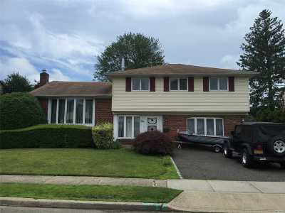 Hicksville Single Family Home For Sale: 69 Walnut Ln