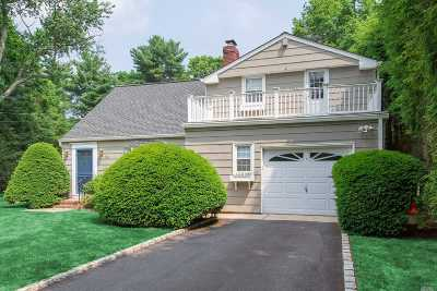 Syosset Single Family Home For Sale: 96 Calvin Ave