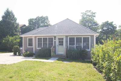 Westhampton Single Family Home For Sale: 29 Depot Rd
