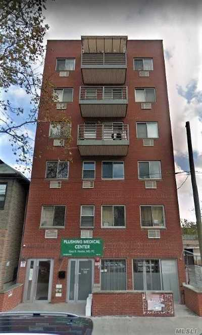 Flushing Condo/Townhouse For Sale: 140-14 Cherry Ave #2A
