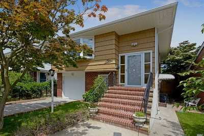 Lynbrook Single Family Home For Sale: 216 Earle Ave