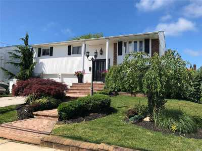 Bellmore Single Family Home For Sale: 2966 Len Dr