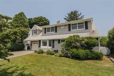 Levittown Single Family Home For Sale: 41 Straight Ln